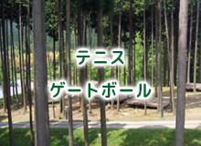 キャンプ・テニス・ゲートボール